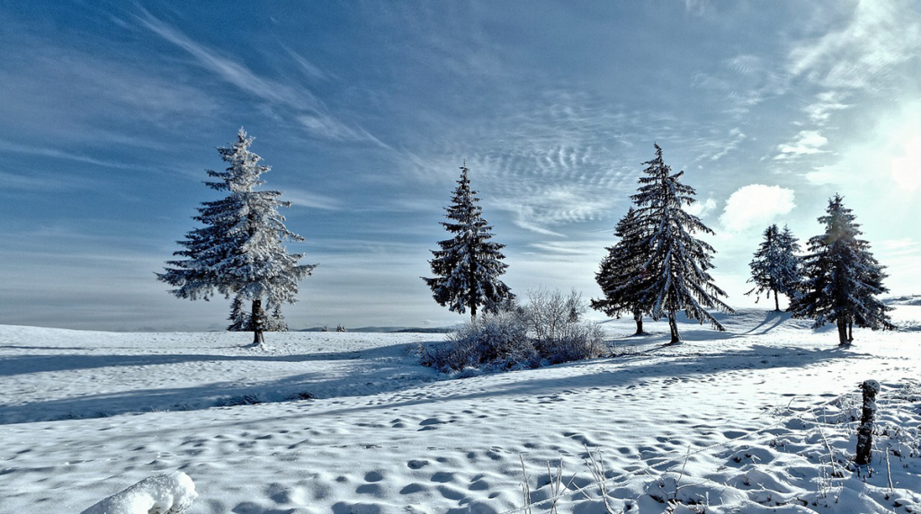 winter-landscape-blog